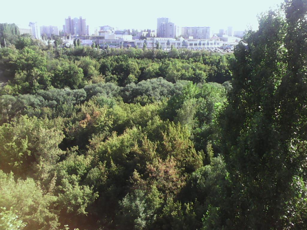 Фото с балкона